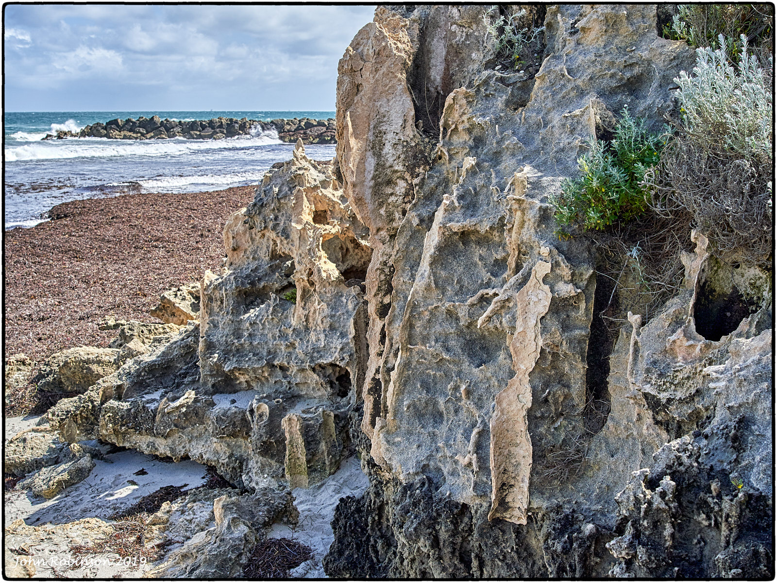 Cottesloe:  where the land ends in a cascade of limestone and seaweed