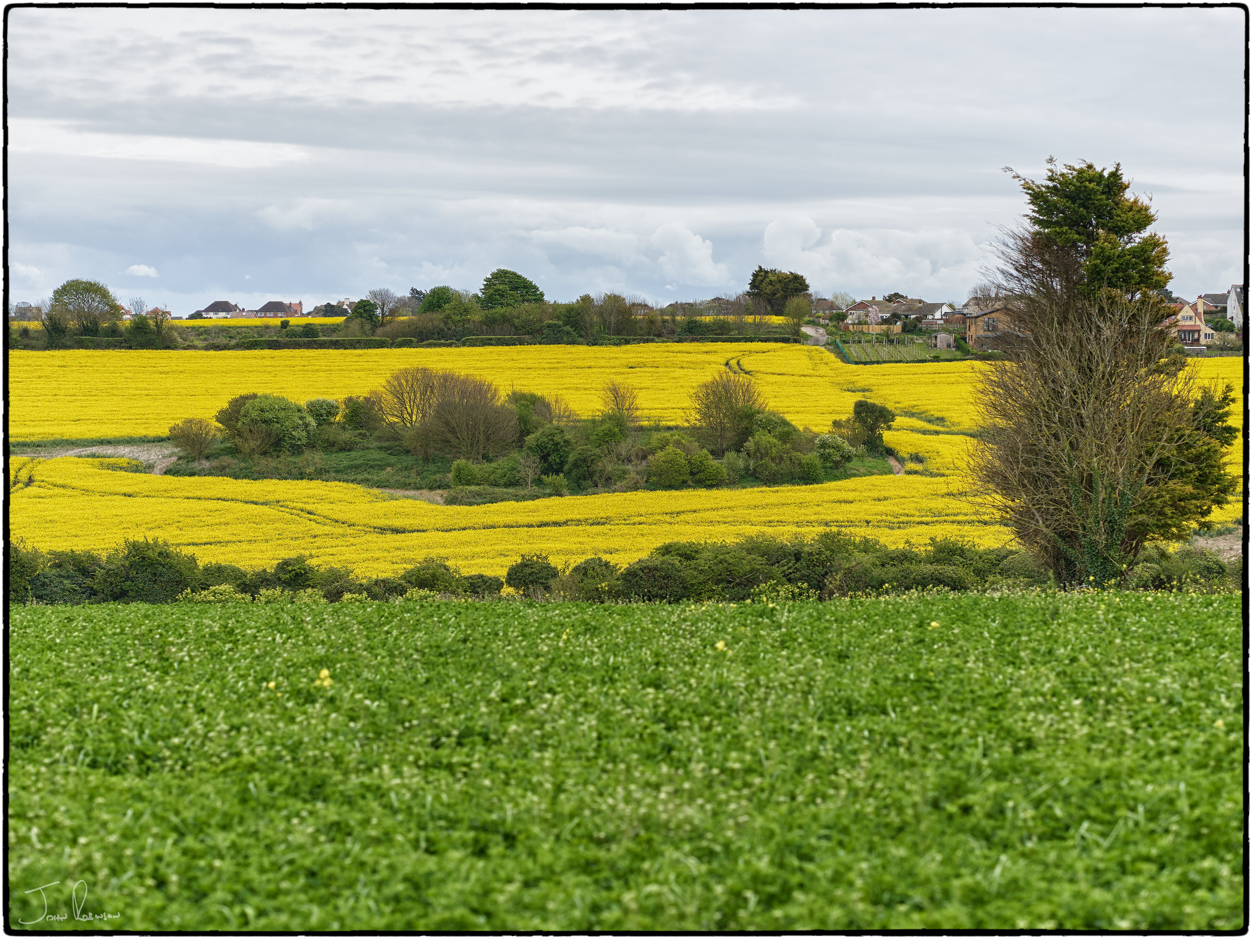 Springtime in Kent