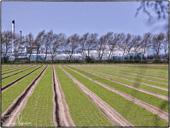 Stour Valley Flood Plain Farm and Factories
