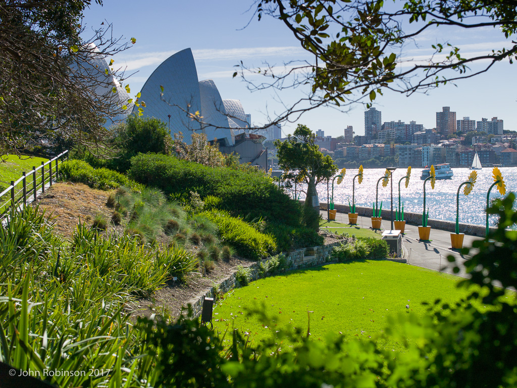 Sydney Opera House seen from the Botanic Gardens